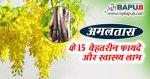 अमलतास के फायदे ,गुण उपयोग और नुकसान | Amaltas Benefits and Side Effects in Hindi