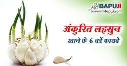 अंकुरित लहसुन खाने के 6 बडें फायदे | Health Benefits of Sprouted Garlic in Hindi