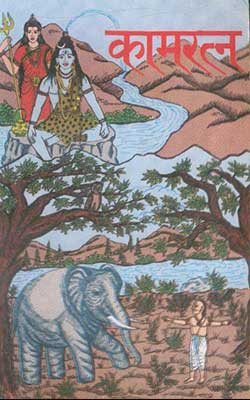 Kam Ratna Jwala Prasad Mishra Hindi PDF Free Download