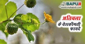 atibala ke aushadhi gun upyog fayde aur nuksan in hindi
