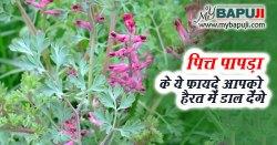 पित्त पापड़ा के ये फायदे आपको हैरत में डाल देंगे - Pitt Papda in Hindi