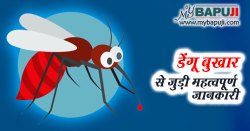 डेंगू बुखार से जुड़ी महत्वपूर्ण जानकारी