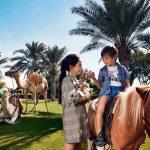 Bab Al Shams Resort In Dubai Restaurants Location More Mybayut
