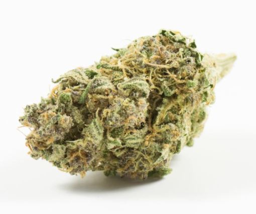 black_cherry_punch_weed