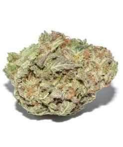 Lemon Cake Sativa Marijuana