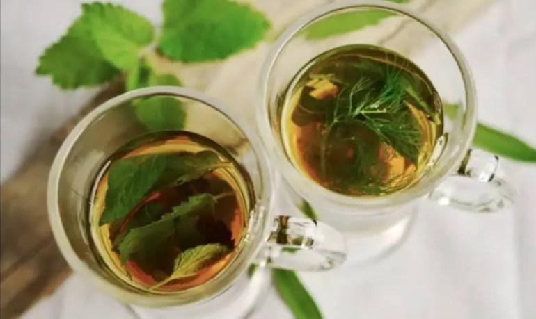 black tea for beard, green tea for hair growth, does green tea cause hair loss, side effects of green tea on hair, green tea for skin, green tea for skin complexion, green tea extract for hair loss, green tea for pores,