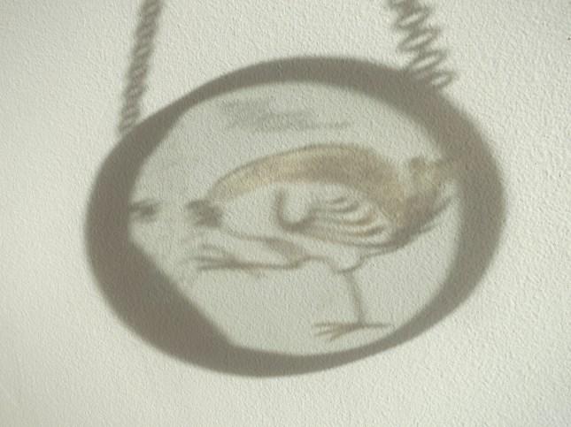 Shadow of the little wren