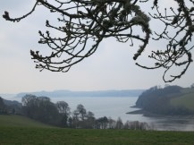 Fal estuary from Trelissick