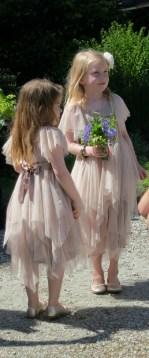 Beautiful young Bridesmaids