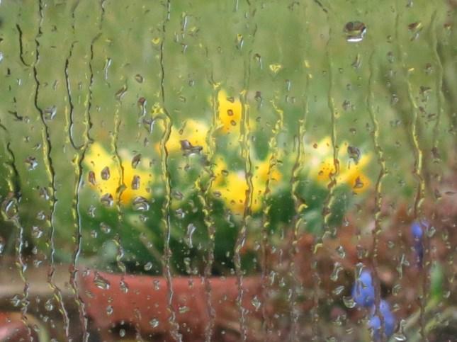 tete-a-tete-through-a-rainy-window