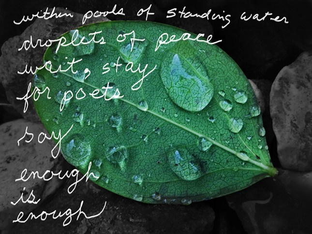 peace droplets