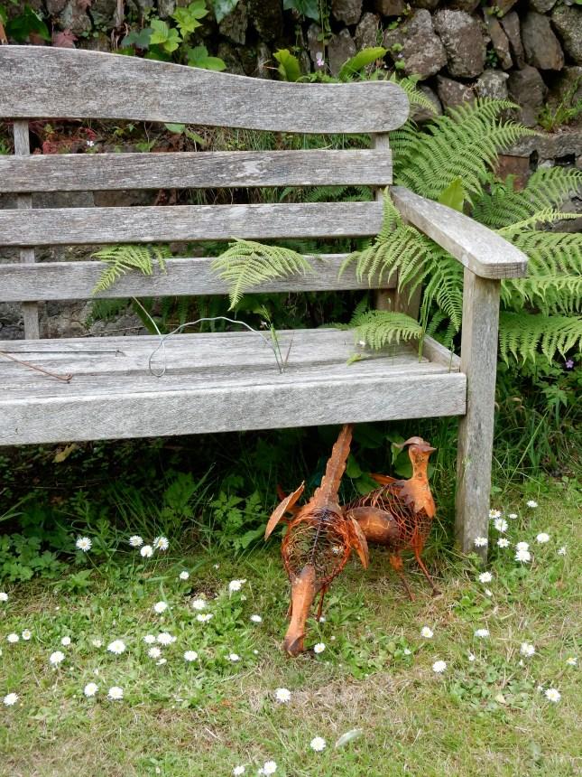 My Pheasants