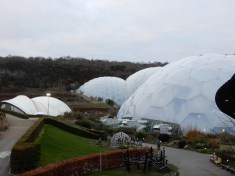 The Biomes from the bridge
