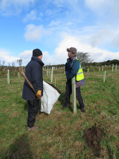 The Lovely Mr S telling Gavin, the planner of the planting, that we have planted all the Birches