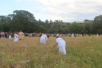 Collecting flowers in the meadow, 3000 audience watching