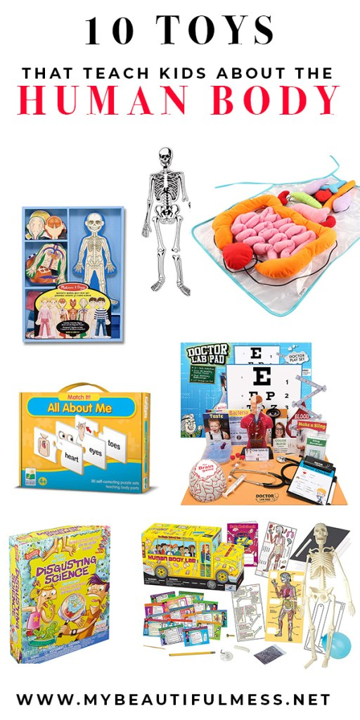 10 TOYS THAT TEACH KIDS ABOUT THE HUMAN BODY