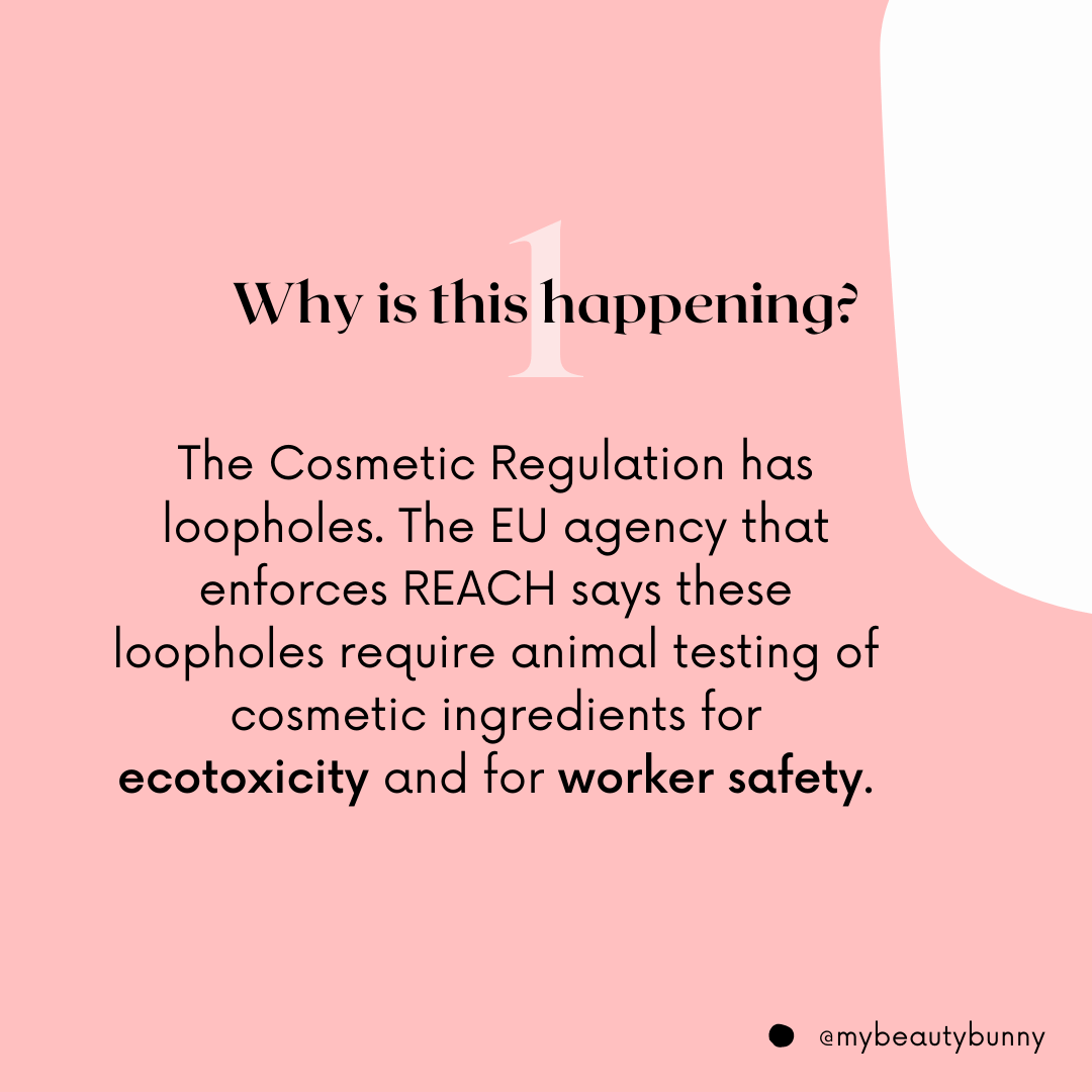 Animal testing is being required in the EU in 2021 - why is this happening?