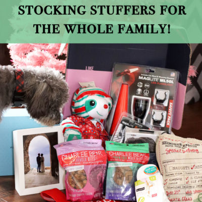Gift Ideas for the Whole Family - 2019 Gift Guide