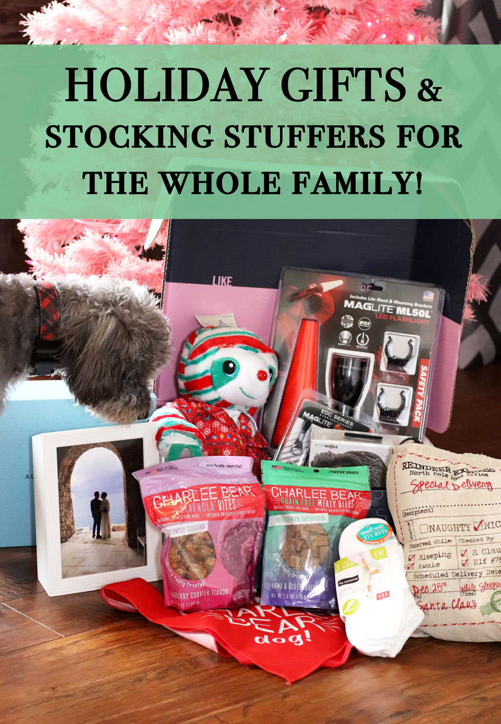 Holiday Gifts & Stocking Stuffer Ideas for the Whole Family!