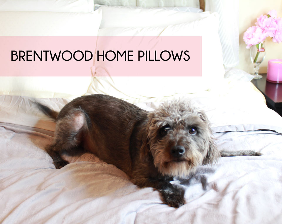 Brentwood Home Pillows Review and Giveaway