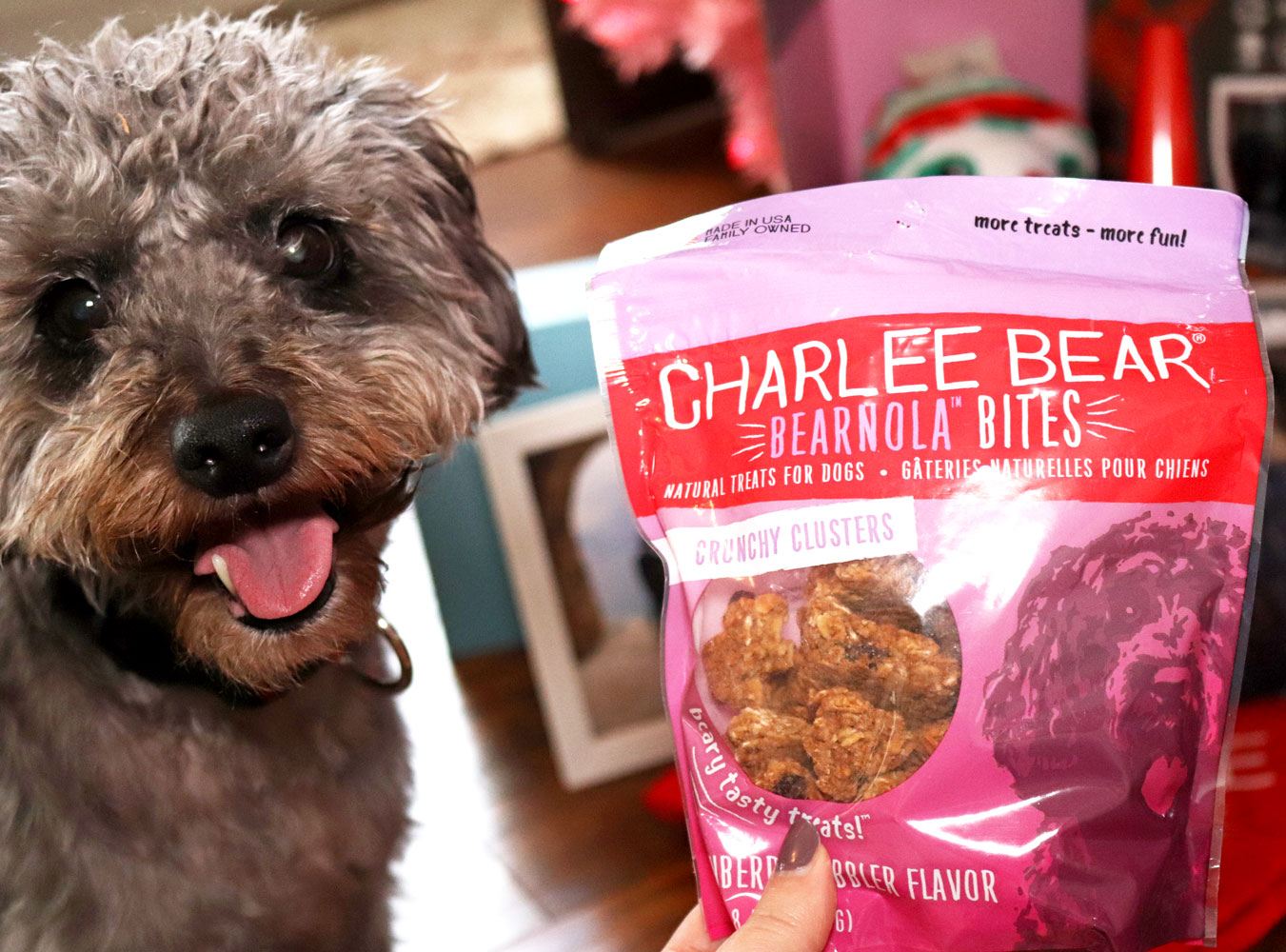 Holiday Gift Guide for the Whole Family 2019 - Charlee Bear dog treats