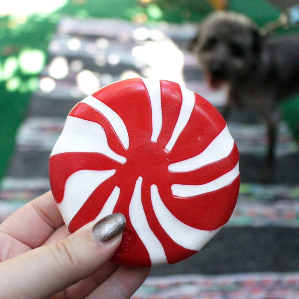 Dog Lovers Holiday Gift Guide - Orbee Tuff Peppermint Dog Toy