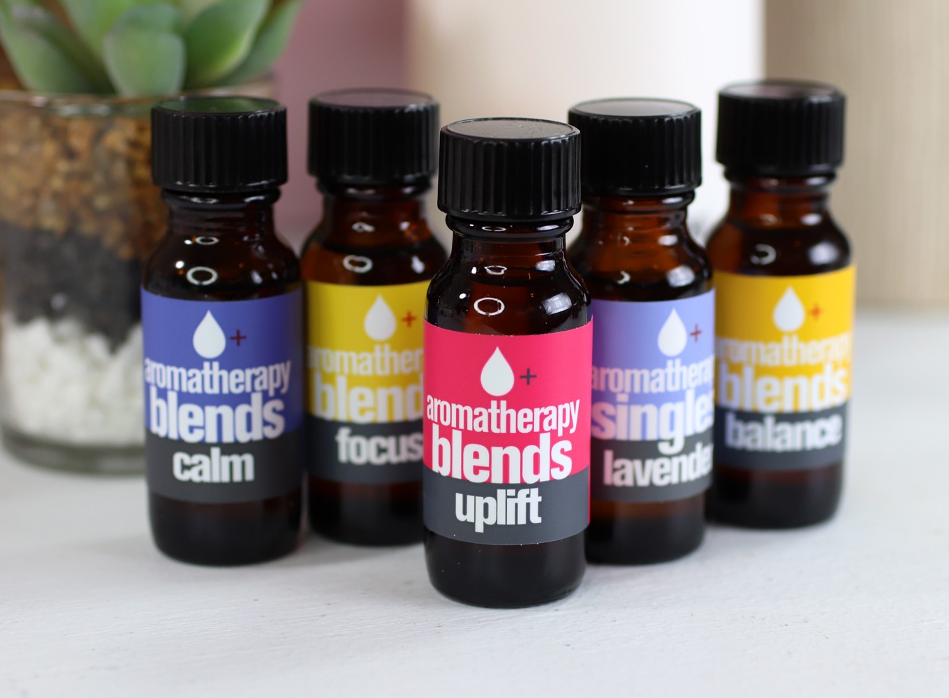 Everyone Aromatherapy Blends Essential Oils - Which is the best essential oil diffuser by LA cruelty free beauty blogger My Beauty Bunny