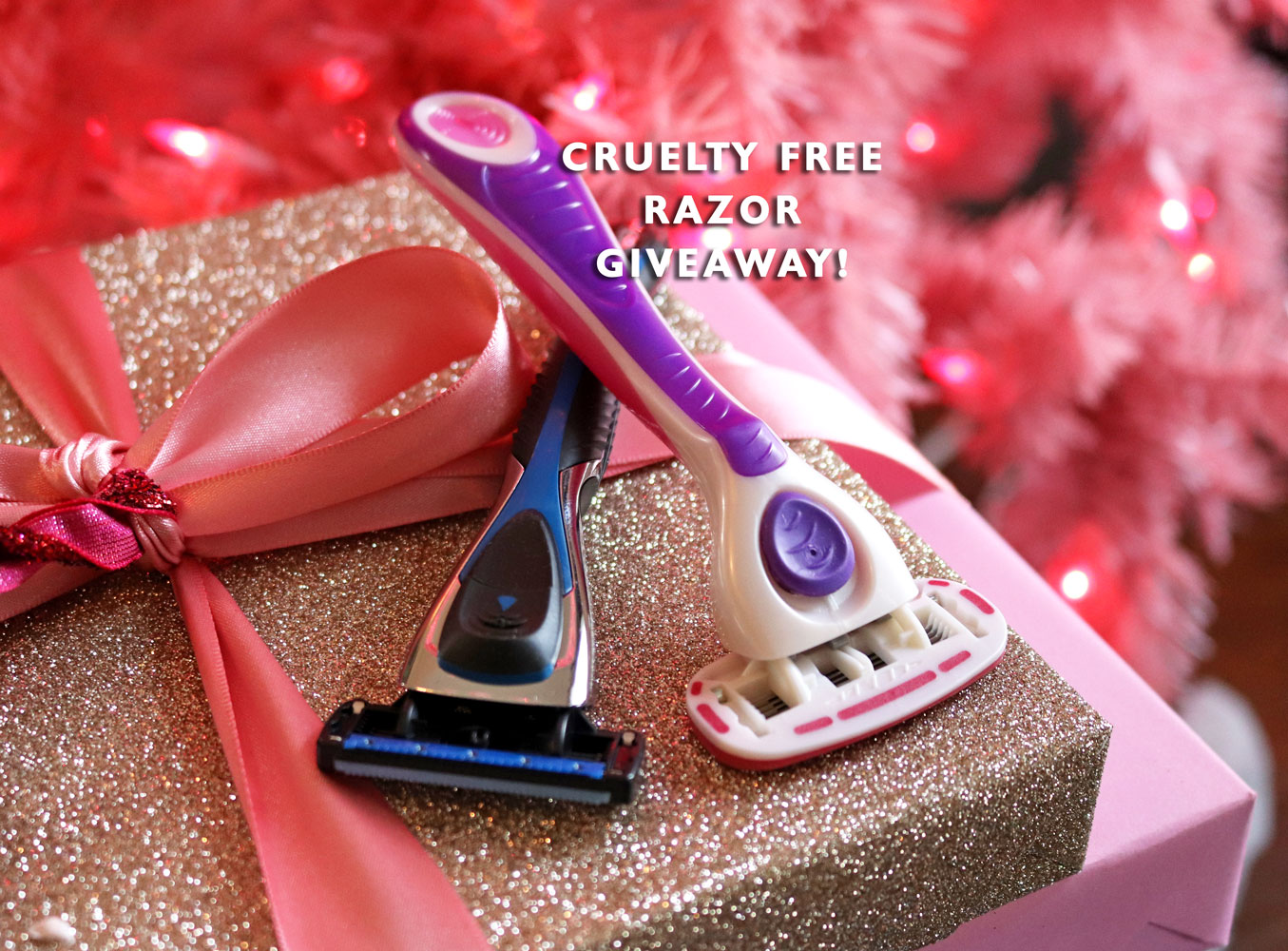 Vegan and Cruelty Free Razor Giveaway from Personna!