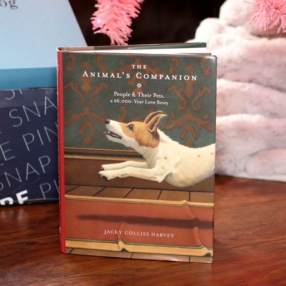Holiday Gift Guide for the Whole Family 2019 - The Animal's Companion book by Jacky Colliss Harvey