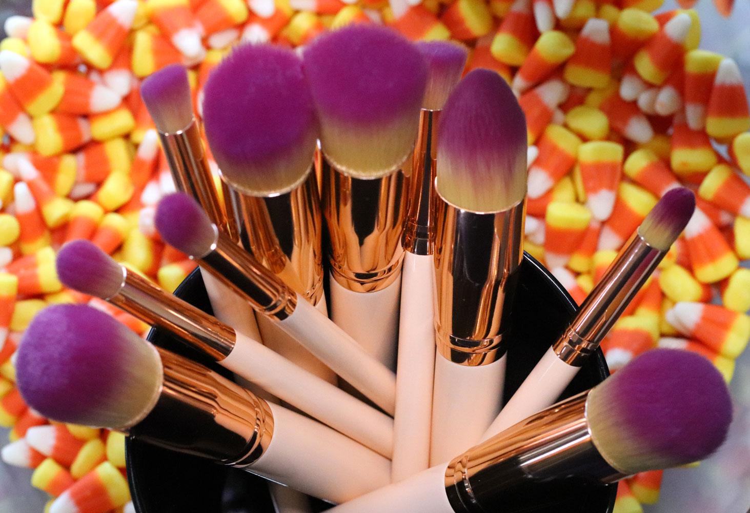 Giveaway - Vegan makeup brush set from The Vegan Warehouse