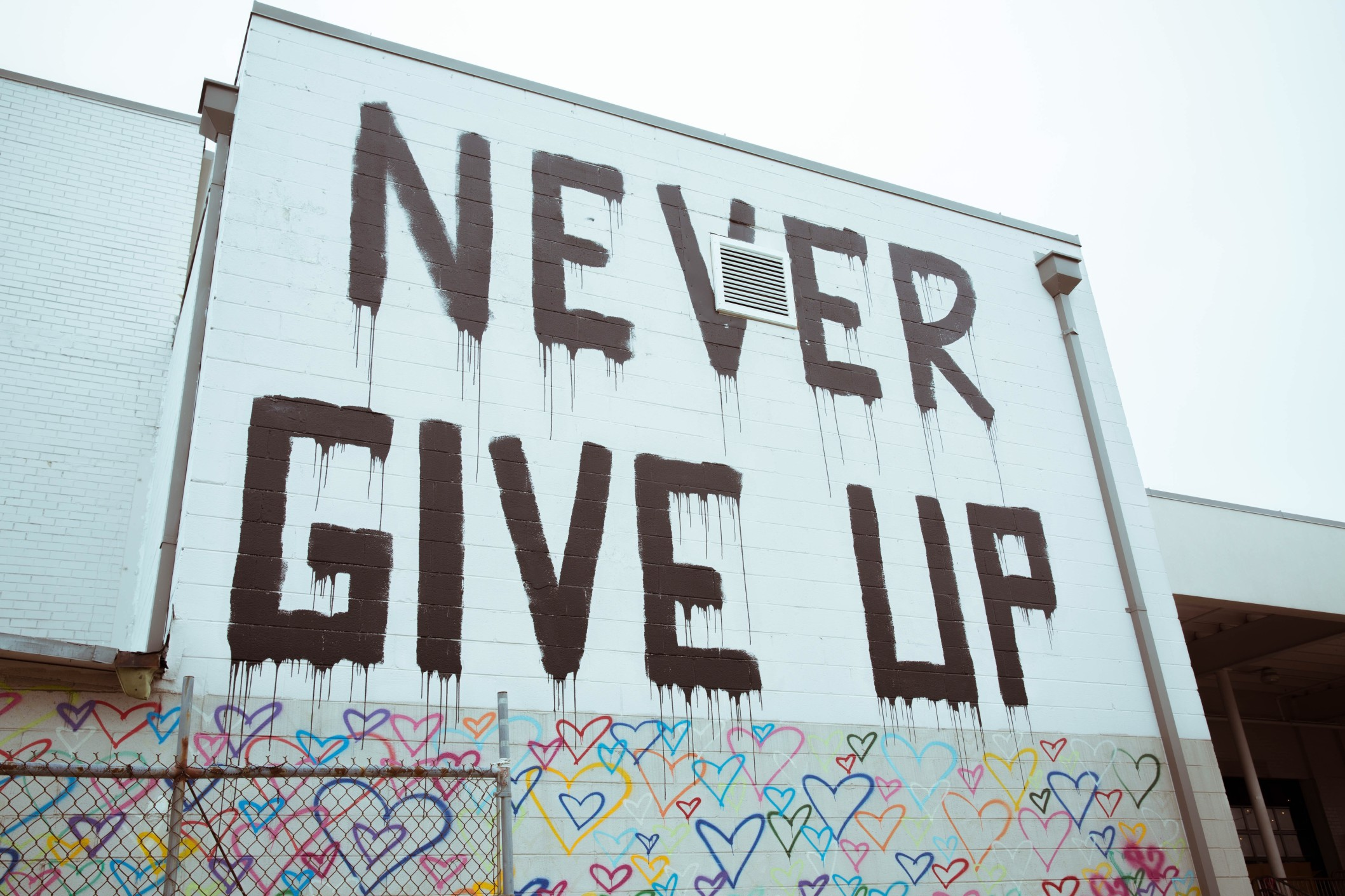 Never give up - fight against animal testing!