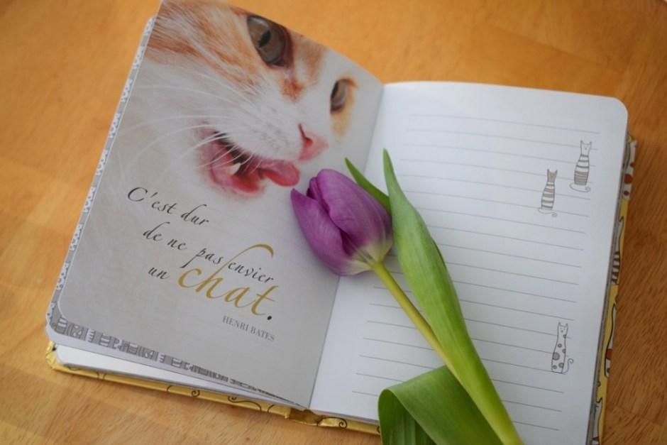 2 Tulipe Carnet Chat