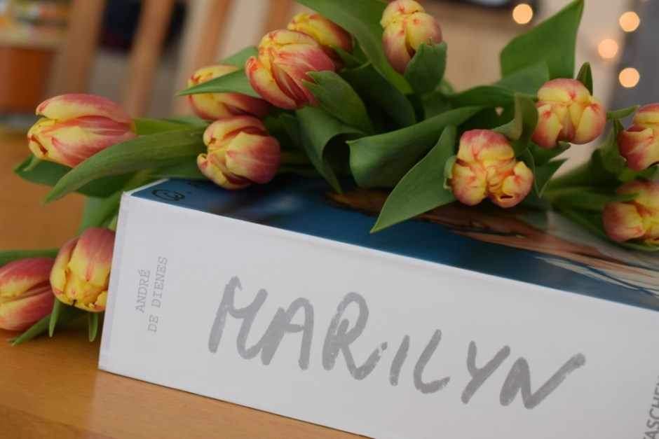 7 Tulipes Marylin