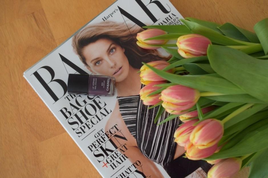 Magazine Tulipes