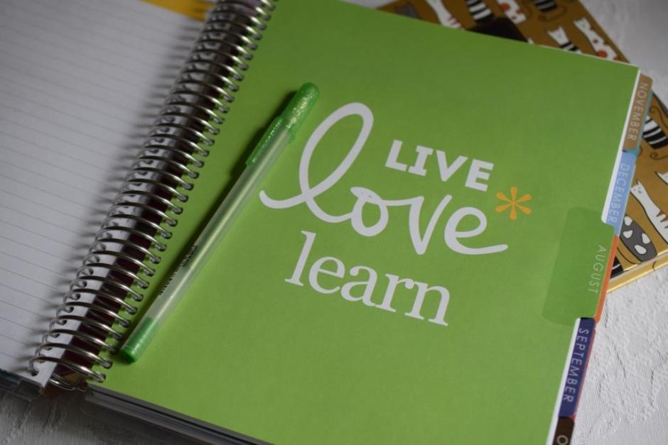 Life planner Erin Condren 4