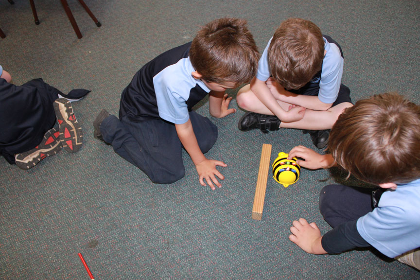 Kindy Maths Investigations (3/6)