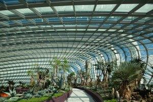 AquaBioPonics - Top de Edifícios com Vidros Fotovoltaicos Transparentes e Verdes