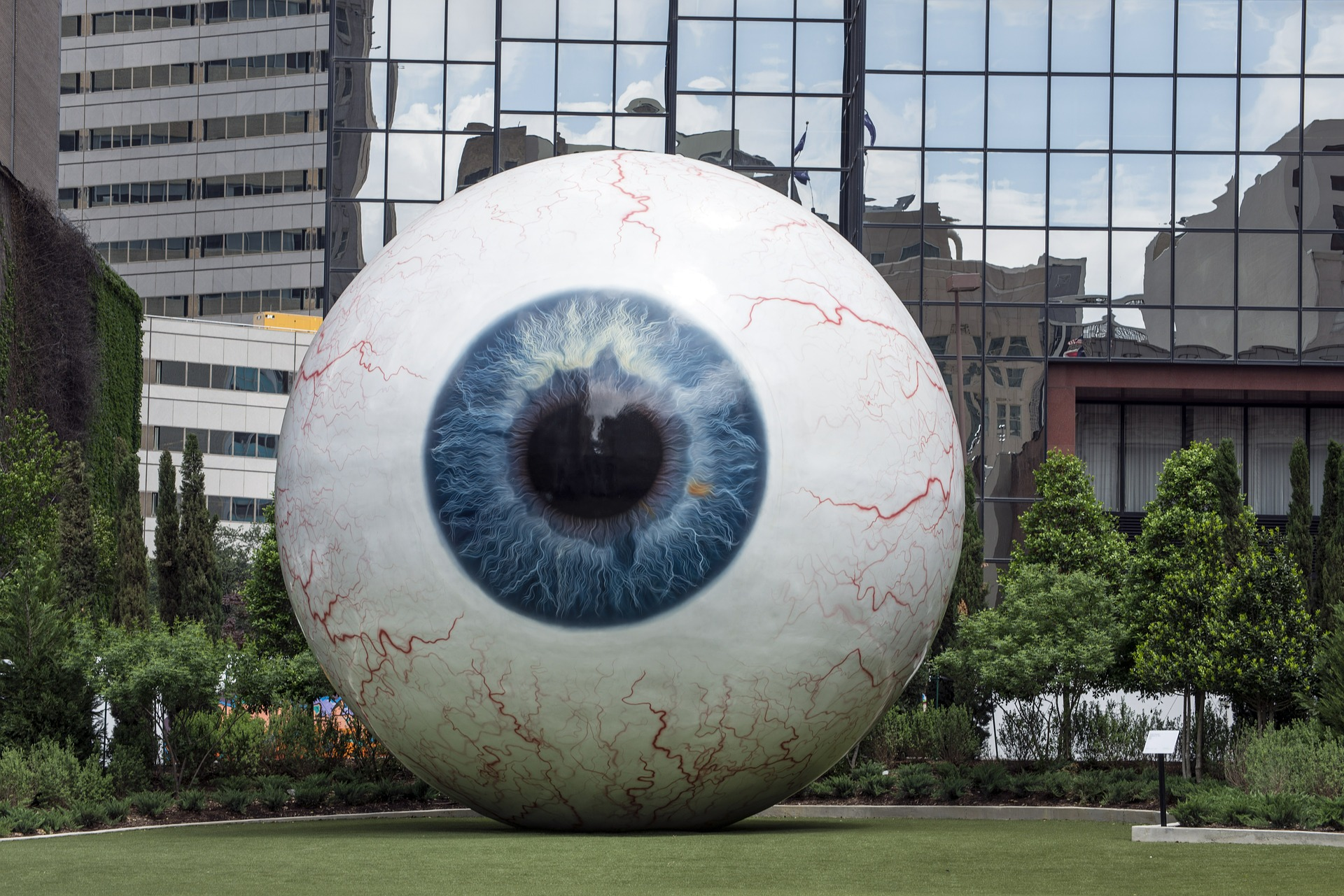 5 Surprising Facts About The Eye
