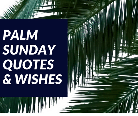Palm sunday quotes and wishes