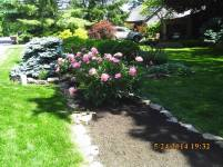 Big C Lawn and Landscaping - Mulch with Assorted Stone Border - Spring Cleanup, 2015 - 95