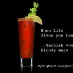 Spicy Bloody Mary Drink Recipe