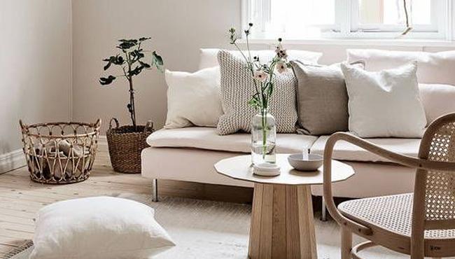 nature et scandinave dans le salon
