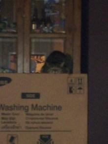Dinah's box!