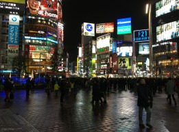 Sibuya crossing at night! Just that is an experience!
