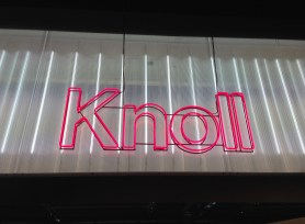 Knoll. Pink neon on transparent polycarbonated film