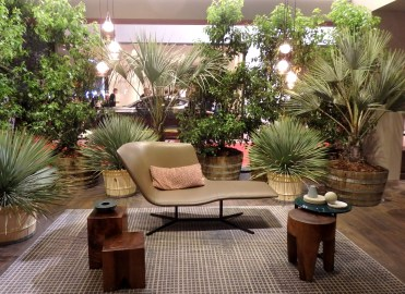 Tropical environment at Lema