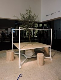 Fantoni's coolest co working station. With a tree of course