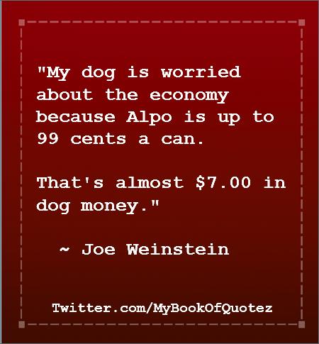 dog worries