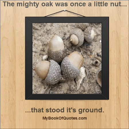 The mighty oak was once a little nut that stood it's ground.