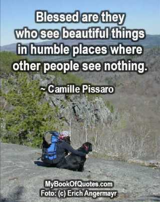 Blessed are they who see beautiful things